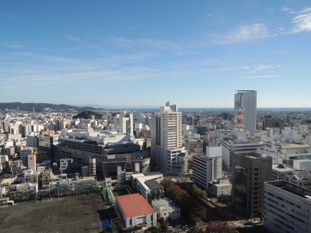 seitai shizuoka